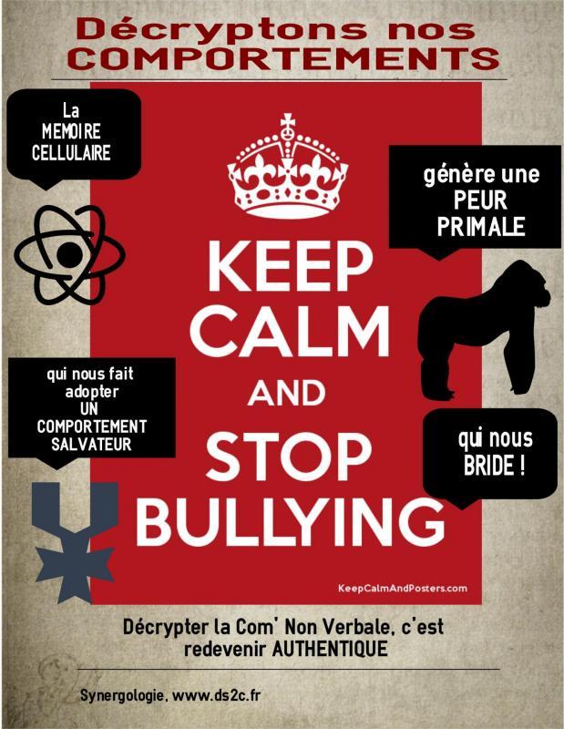 Bullying12c 2