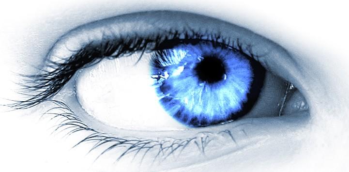 Oeil iris