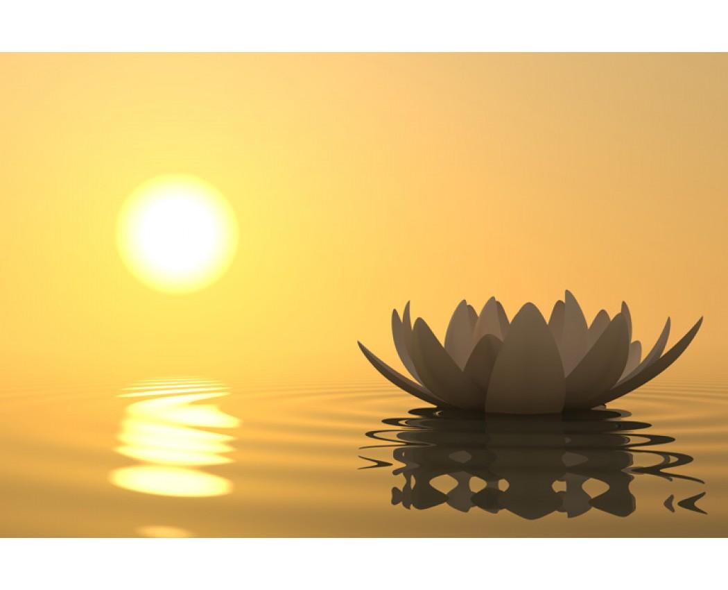 Zen 20flower